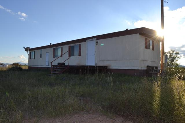 7058 W Hog Farm Road, Mcneal, AZ 85617 (MLS #168796) :: Service First Realty