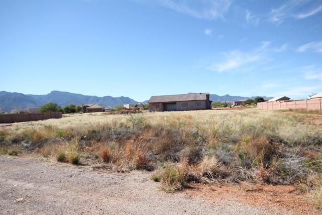 Lot 115 Crape Myrtle, Sierra Vista, AZ 85650 (MLS #168837) :: Service First Realty