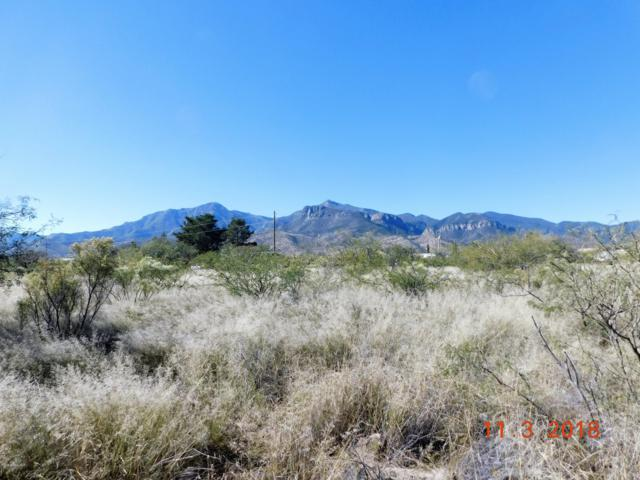 6031 S Calle De La Menta, Hereford, AZ 85615 (MLS #168875) :: Service First Realty