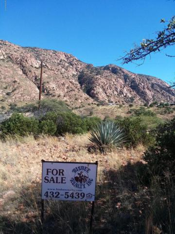 Tbd Hannon Ranch Rd, Bisbee, AZ 85603 (MLS #168919) :: Service First Realty