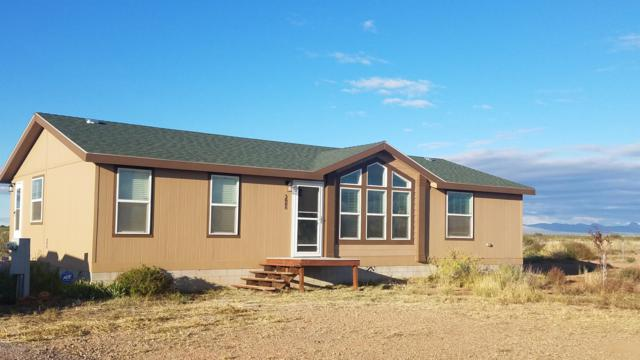 3888 W New Mission Lane, Mcneal, AZ 85617 (#168949) :: Long Realty Company