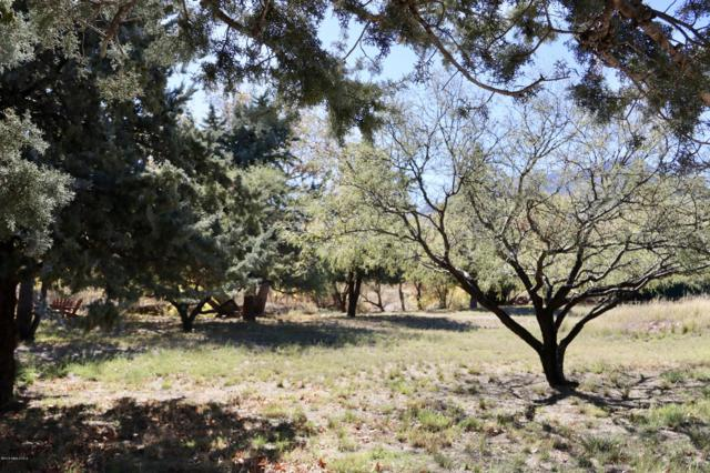 4894 E Miller Canyon Road, Hereford, AZ 85615 (MLS #168981) :: Service First Realty