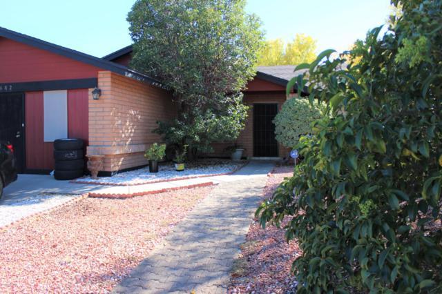3682 Sandpiper Drive, Sierra Vista, AZ 85650 (#168992) :: Long Realty Company