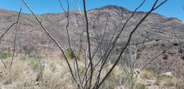 Tbd S Hidden Valley Road, Bisbee, AZ 85603 (MLS #169101) :: Service First Realty