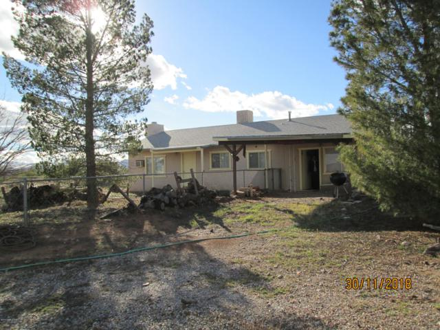 5075 W Terra Way, Mcneal, AZ 85617 (MLS #169142) :: Service First Realty