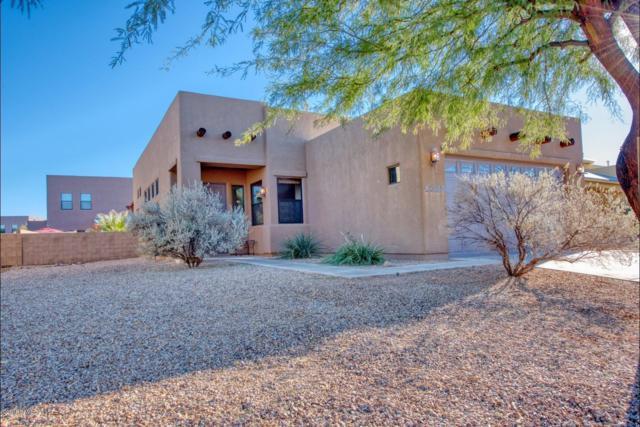 1229 Horner Drive, Sierra Vista, AZ 85635 (MLS #169165) :: Service First Realty