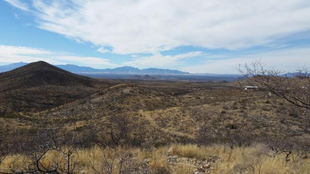 ? S Oregon Trail, Tombstone, AZ 85638 (MLS #169218) :: Service First Realty