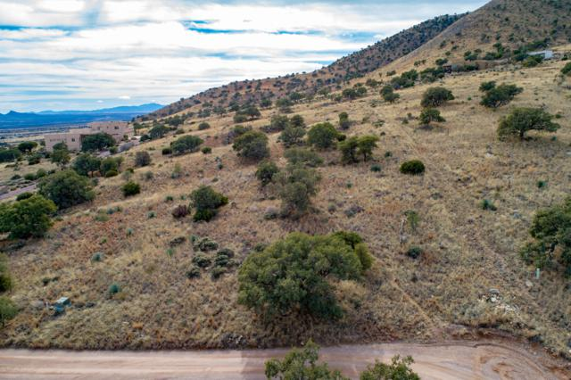 Tbd E Indigo Sky Road, Hereford, AZ 85615 (MLS #169444) :: Service First Realty