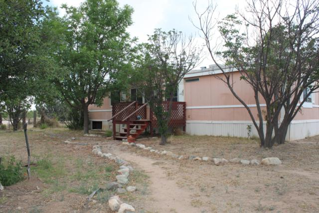 8891 E Rose Ranch Lane, Hereford, AZ 85615 (MLS #169452) :: Service First Realty