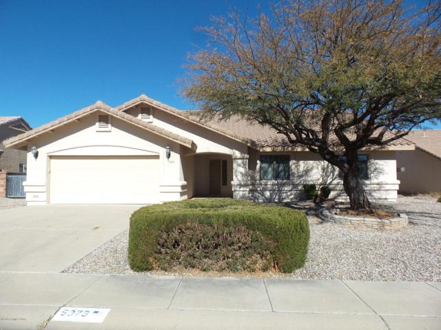 5373 Highland Shadows Drive, Sierra Vista, AZ 85635 (#169467) :: Long Realty Company