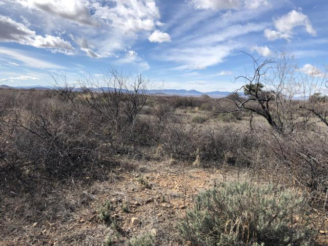 Lot 82 S Los Gatos Rd #82, Pearce, AZ 85625 (MLS #169486) :: Service First Realty