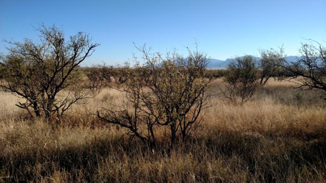 :Lot 21 A Duststorm Road, Huachuca City, AZ 85616 (MLS #169502) :: Service First Realty