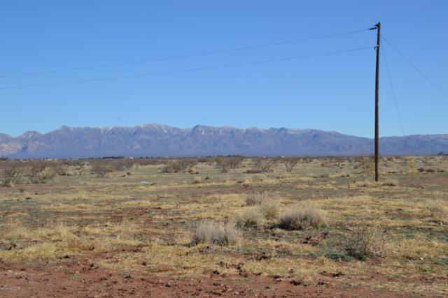 Tbd 160 Acres, Mcneal, AZ 85617 (#169539) :: Long Realty Company