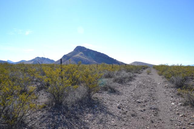 Tbd La Canada Drive, Douglas, AZ 85607 (#169580) :: Long Realty Company