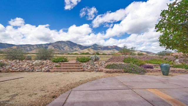8710 S Palisades Drive, Hereford, AZ 85615 (MLS #169645) :: Service First Realty