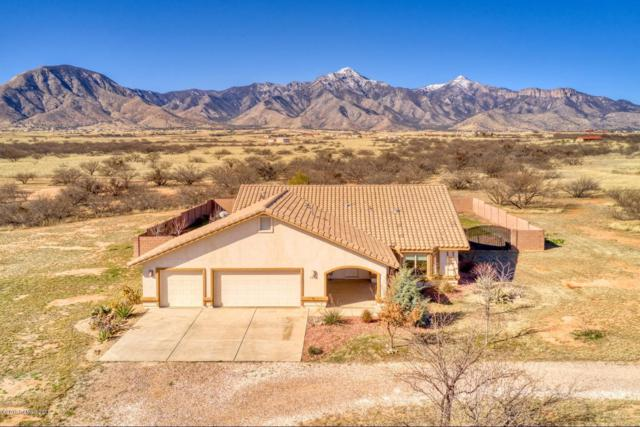 9456 S Springtail Drive, Hereford, AZ 85615 (MLS #169670) :: Service First Realty