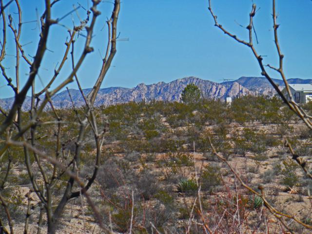 Tbd E San Pedro Way, Tombstone, AZ 85638 (MLS #169739) :: Service First Realty