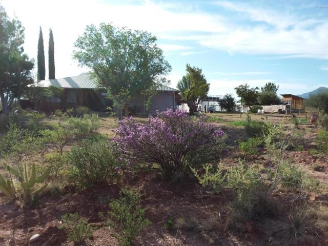 10940 E Calle Venado, Hereford, AZ 85615 (MLS #169808) :: Service First Realty