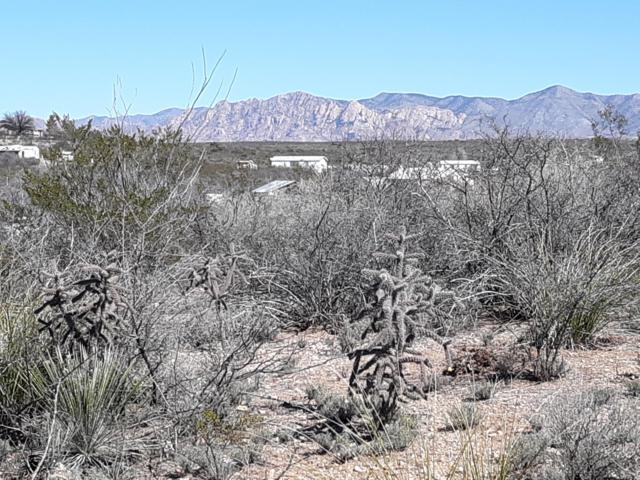 3.6 Ac Ed West Rd & Dubs Ln, Tombstone, AZ 85638 (MLS #169909) :: Service First Realty