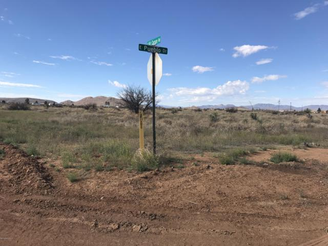 Tbd S Kit Carson Road, Pearce, AZ 85625 (#170015) :: Long Realty Company