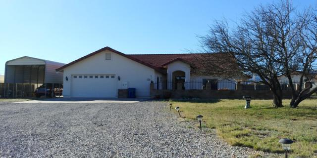 5689 S Mir Way, Hereford, AZ 85615 (MLS #170029) :: Service First Realty