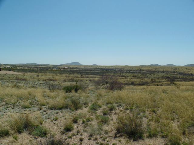 10 Acres N Bennett, Tombstone, AZ 85638 (#170221) :: The Josh Berkley Team