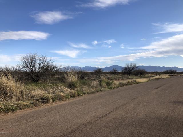 80 Acres E K C Williams Lane, Huachuca City, AZ 85616 (MLS #170227) :: Service First Realty
