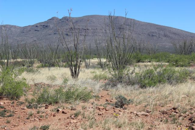 Tbd E High Desert Drive, Tombstone, AZ 85638 (MLS #170431) :: Service First Realty