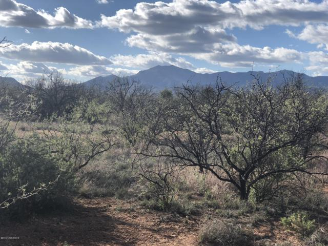 Address Not Published, Huachuca City, AZ 85616 (MLS #170432) :: Service First Realty