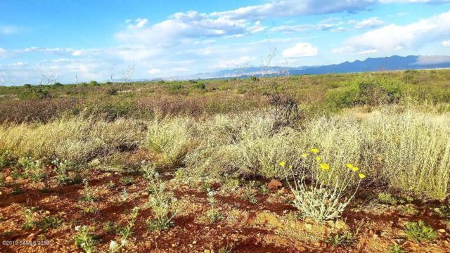 Lot 54 W Foothills Trail, Elfrida, AZ 85610 (MLS #170457) :: Service First Realty