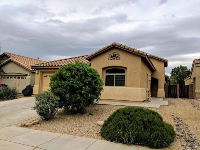 400 N Rustlers Canyon Drive, Sahuarita, AZ 85629 (MLS #170469) :: Service First Realty