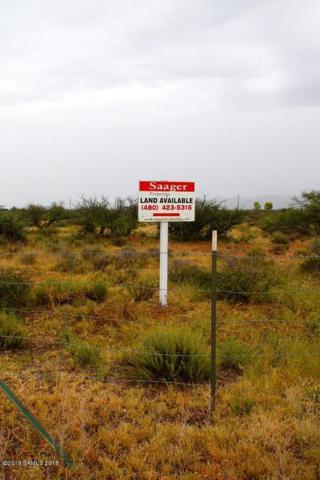 12450 S Poppy Lane, Pearce, AZ 85625 (MLS #170588) :: Service First Realty