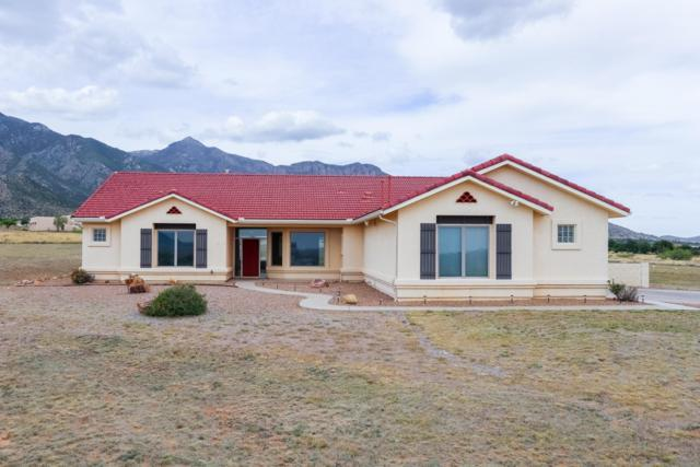 9250 S Andalusian Way, Hereford, AZ 85615 (MLS #170605) :: Service First Realty