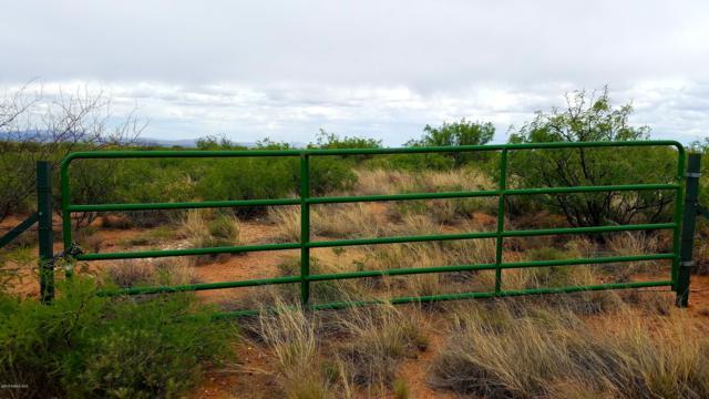 Lot 57 North Last Trail, Elfrida, AZ 85610 (MLS #170619) :: Service First Realty