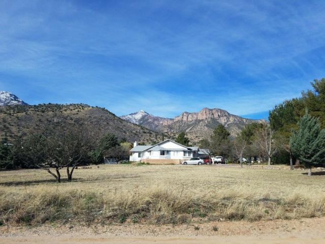 4510 E Wickersham Road, Hereford, AZ 85615 (MLS #170628) :: Service First Realty