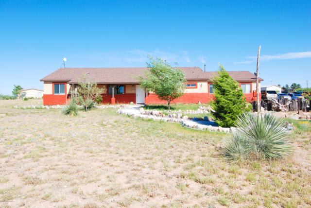 573 N Carina Circle, Benson, AZ 85602 (#170681) :: The Josh Berkley Team