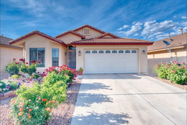 1889 Silverado Drive, Sierra Vista, AZ 85635 (#170682) :: The Josh Berkley Team