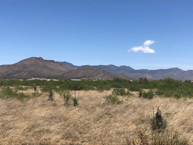 0000 W No Address Road, Huachuca City, AZ 85616 (MLS #170689) :: Service First Realty
