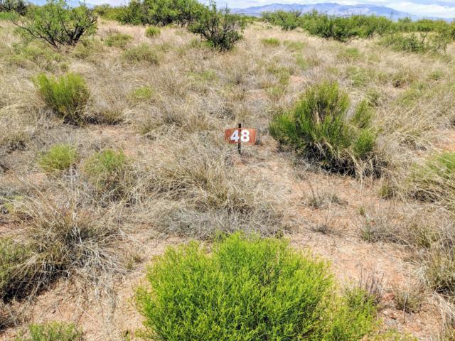 Lot 48 Roadrunner Trail, Saint David, AZ 85630 (MLS #170698) :: Service First Realty