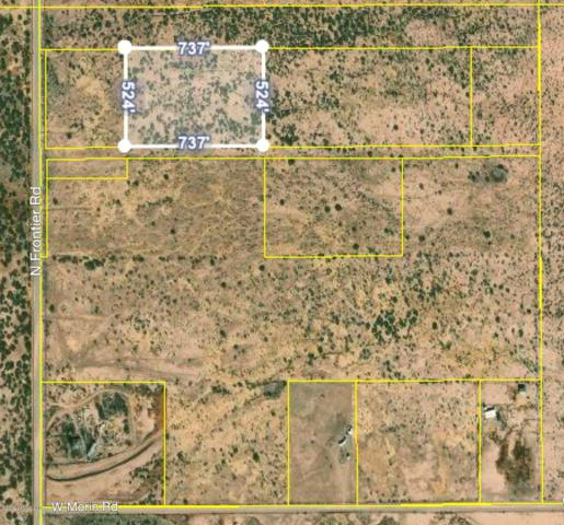 Xxx N Frontier Road, Mcneal, AZ 85617 (#170728) :: The Josh Berkley Team