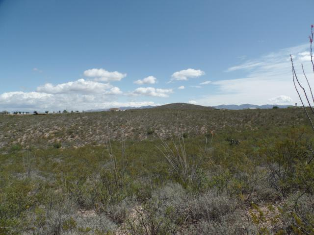 7.7 Acres Louist Street, Tombstone, AZ 85638 (MLS #170733) :: Service First Realty