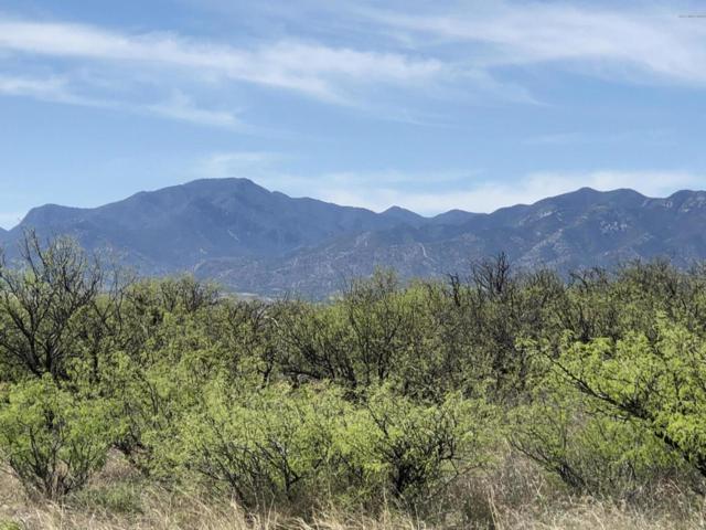 Lot 33d W El Rancho Boulevard, Huachuca City, AZ 85616 (MLS #170737) :: Service First Realty