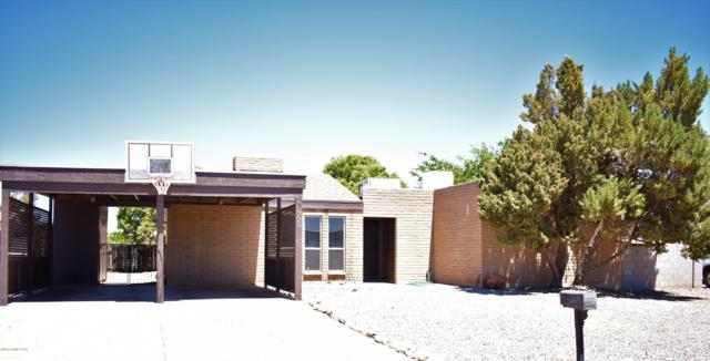725 Pampas Place, Sierra Vista, AZ 85635 (#170741) :: Long Realty Company