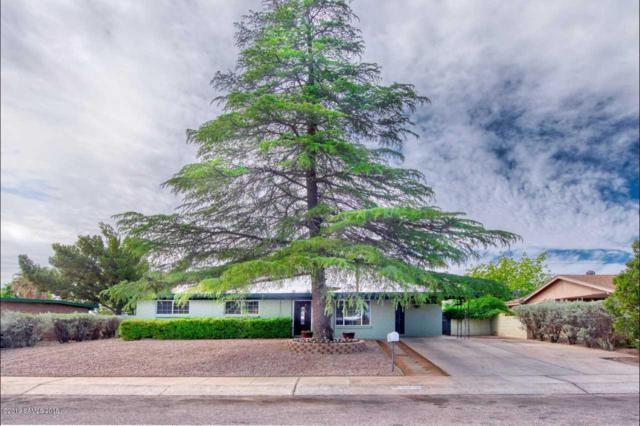 2948 Meadowlark Drive, Sierra Vista, AZ 85635 (#170755) :: Long Realty Company