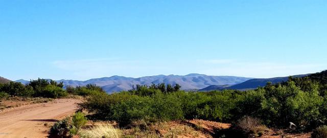 Lot 25 N Saddlebag Trail, Elfrida, AZ 85610 (MLS #170772) :: Service First Realty