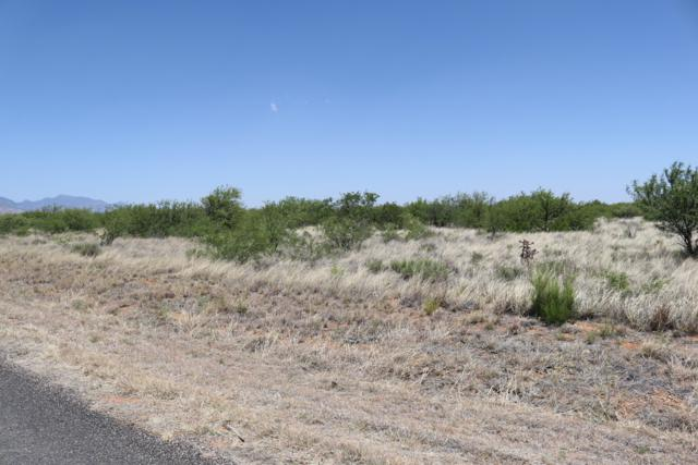 Tbd Three Canyons Road, Hereford, AZ 85615 (MLS #170845) :: Service First Realty