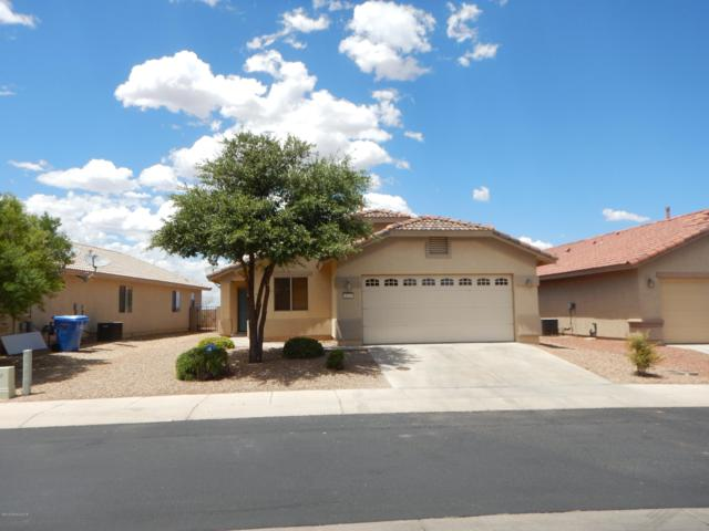 4529 Big Bend Street, Sierra Vista, AZ 85650 (#170862) :: Long Realty Company