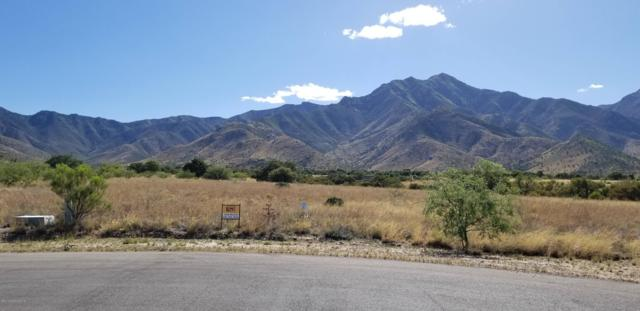 Xx S Swiss Court, Hereford, AZ 85615 (MLS #170874) :: Service First Realty