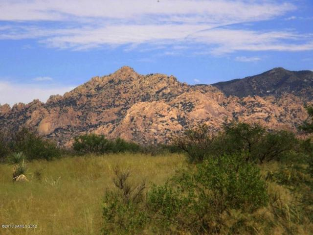 Lot 56 S De Niza Road, Saint David, AZ 85630 (#170888) :: Long Realty Company