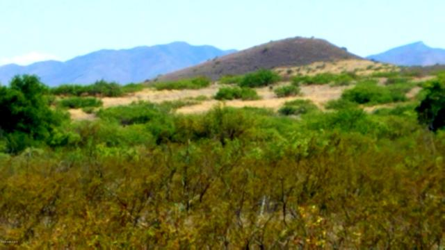 Lot 62 W Foothill Trail, Elfrida, AZ 85610 (MLS #170892) :: Service First Realty